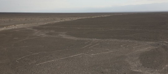 Symbols in Nazca