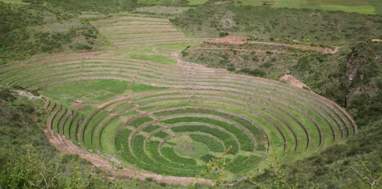 Moray, an agricultural laboratory