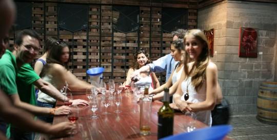 Tasting wine, bodega Zuccard
