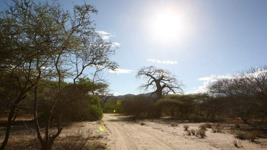Leaving the Baobab Valley campsite.