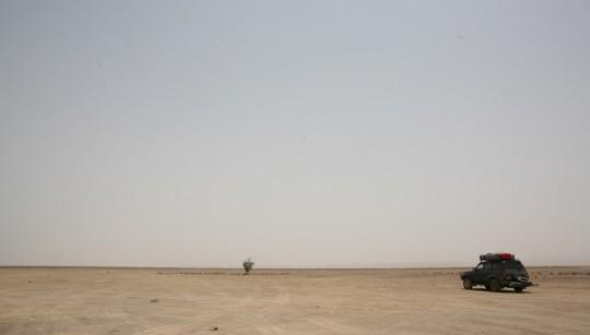 The desert in Djibouti. Hot!