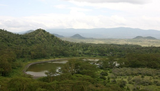 The old crater is now a lake home to flamingoes and water buffaloes.