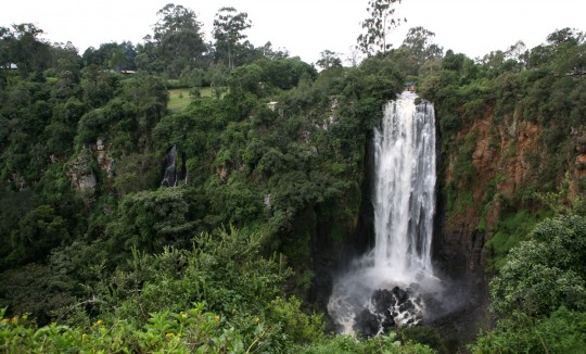 The Thomson's Falls.