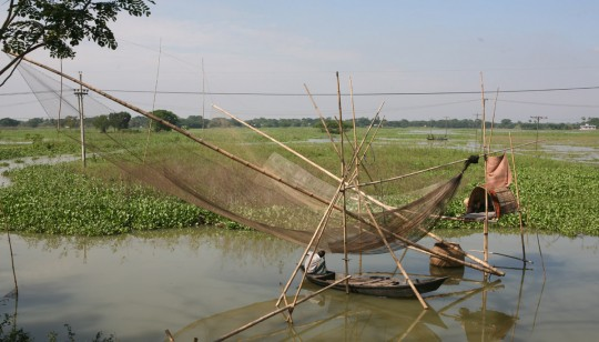 Fishing is huge in the many rivers of Bangladesh. Fish is a major source of food for many of the people in the Ganges Delta.