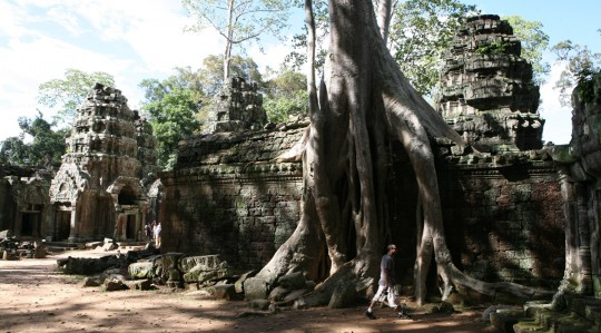 Mysterious Ta Prohm.