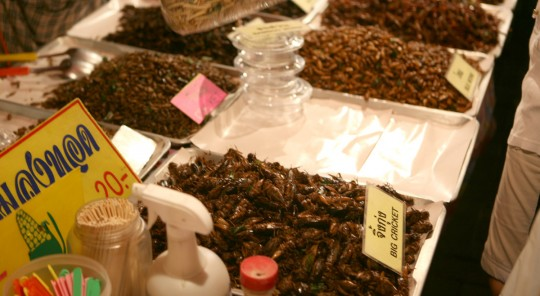 We didnt try to eat the many kind of worms and crickets sold in the market.