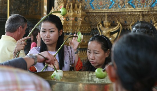 Dipping lotus buds in water for luck, before seeing the Emerald Buddha.