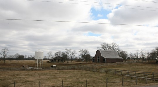 Typical landscape in eastern Tennessee.